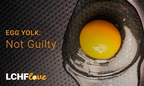 egg-yolks-OCEKO40